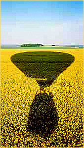 See your shadow projected onto the Canola fields  http://www.Ballonfahrten-Frankfurt.de